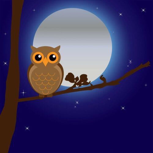 フクロウもお月見