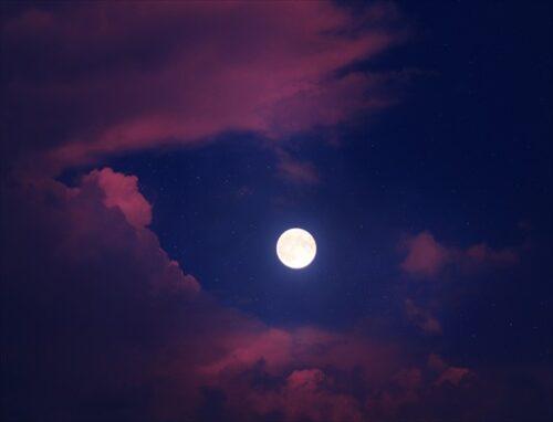 お月見くださ~い