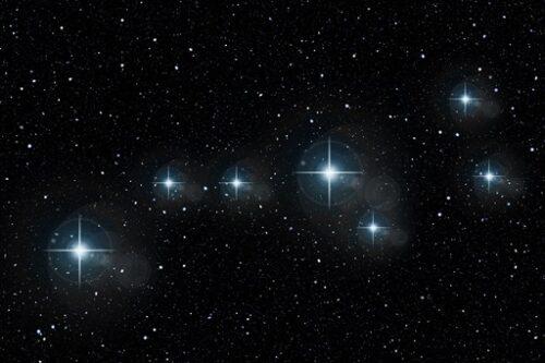 夜の星に照らされた母グマはお魚をつる