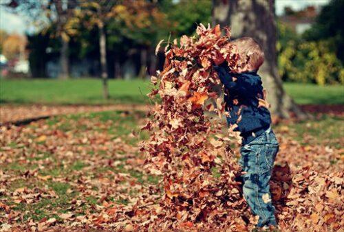 子どものころは落ち葉だって楽しかった