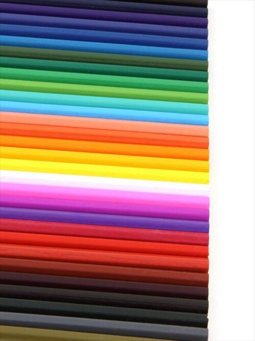 色鉛筆のパラダイス