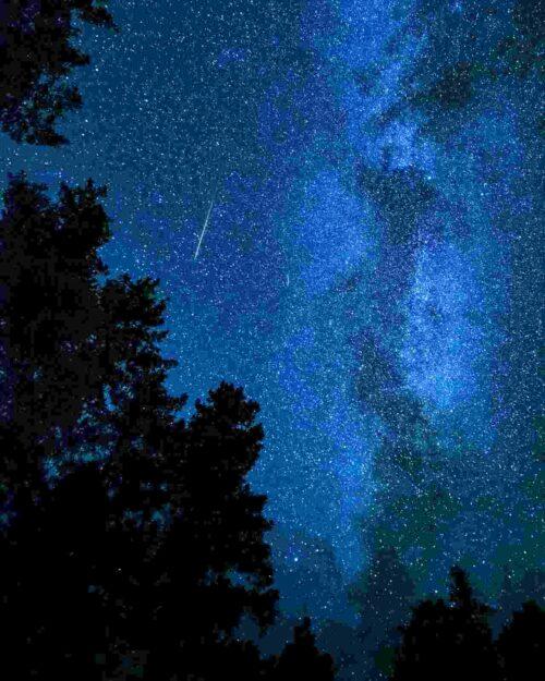 森から見上げる流れ星