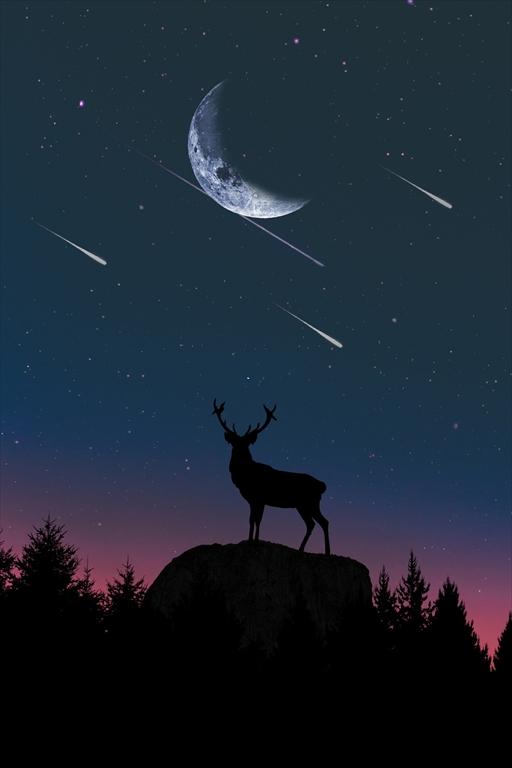 星の降る夜の読み聞かせはジャズののりで