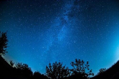 星降る夜の子鹿の冒険