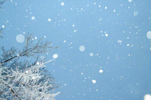雨は夜更け過ぎに雪へと変わった