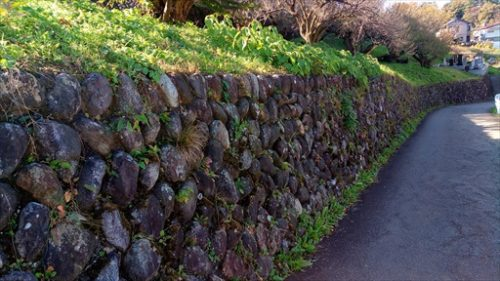 雑草の生えた石垣