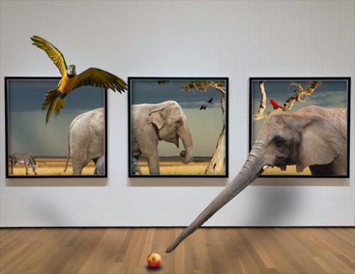 ゾウの時間